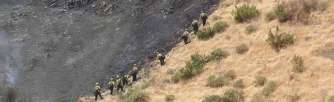 Wildfire_crew_on_hill